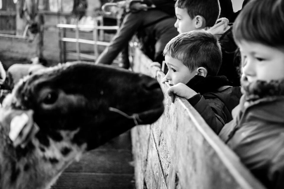 FOTOGRAFIA-INFANTIL-MIRANDAOLA-14