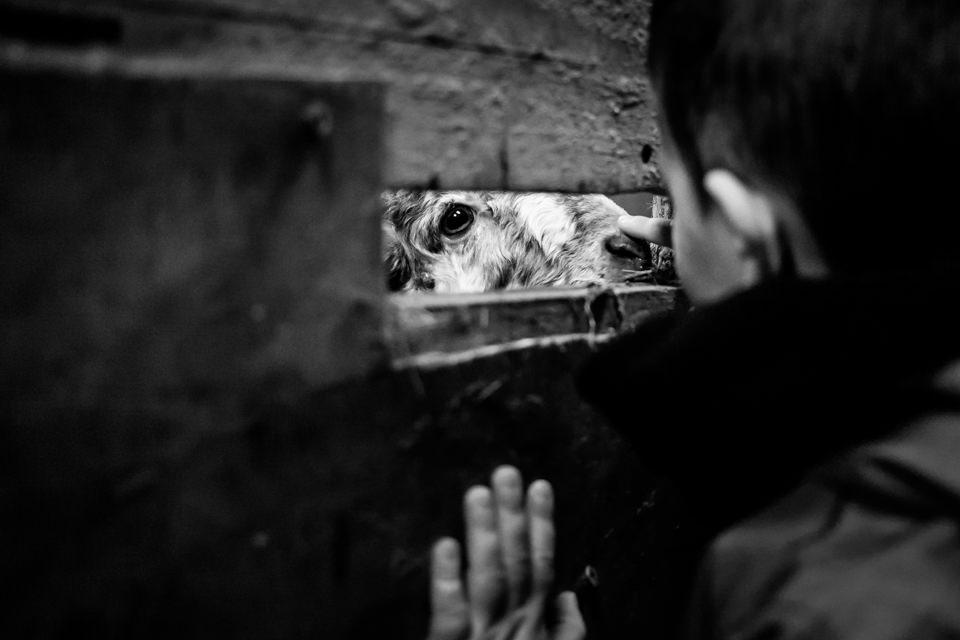 FOTOGRAFIA-INFANTIL-MIRANDAOLA-7