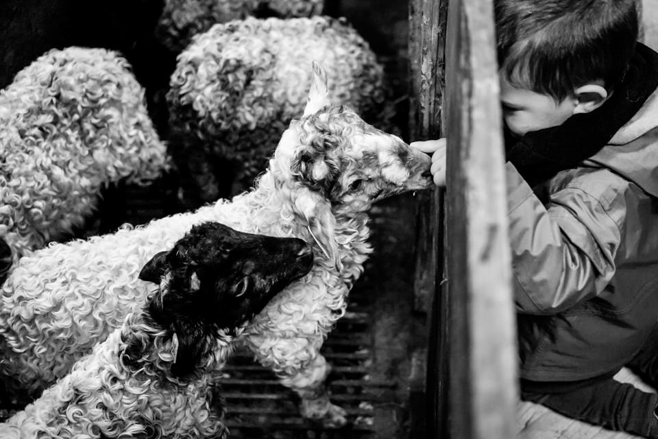 FOTOGRAFIA-INFANTIL-MIRANDAOLA-9