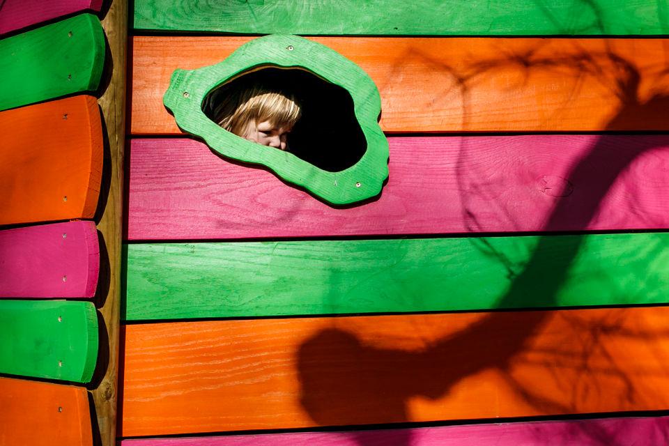 FOTOGRAFIA-INFANTIL-ARBOLES-23